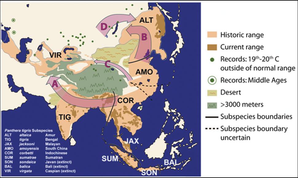 Historical tiger distribution PLoS 2009
