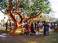 Holi party and decorated tree.jpg