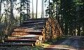 Holzstapel - panoramio.jpg