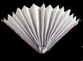 Homemade Paper Hand Fan.png