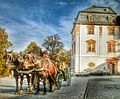 Horse and carriage and the Anna-Amalia library (12638255383).jpg