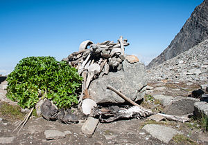 Roopkund - Human skeletons in Roopkund Lake