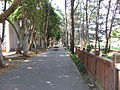 Hundred-Flower Stream Path in National Central University, Taiwan.JPG