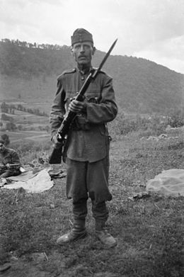 Hungarian soldier with Mannlicher M1895 rifle, 1940.jpg
