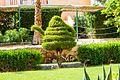 Hurghada, Qesm Hurghada, Red Sea Governorate, Egypt - panoramio (272).jpg