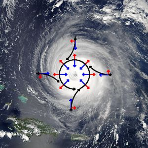 Tropical cyclogenesis - Schematic representation of flow around a low-pressure area (in this case, Hurricane Isabel) in the Northern hemisphere. The pressure gradient force is represented by blue arrows, the Coriolis acceleration (always perpendicular to the velocity) by red arrows