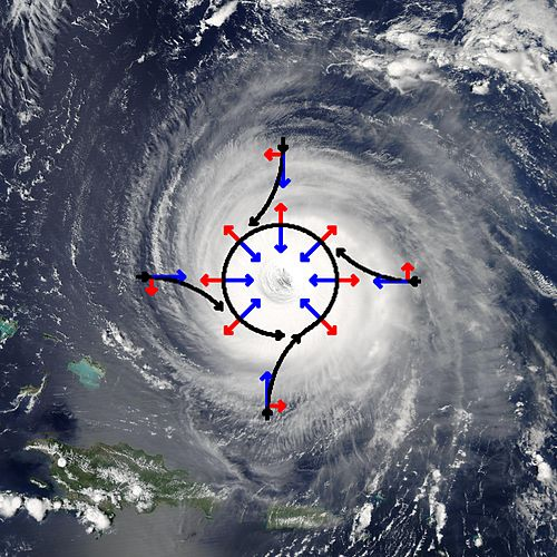 Schematic representation of flow around a low-pressure area (in this case, Hurricane Isabel) in the Northern hemisphere. The pressure gradient force is represented by blue arrows, the Coriolis acceleration (always perpendicular to the velocity) by red arrows Hurricane isabel and coriolis force.jpg