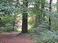 Huttenweg 12.jpg