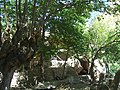 Ilıca Ziyaret - panoramio.jpg