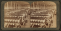 In the great spinning-room - 104,000 spindles - Olympian Cotton Mills, Columbia, S.C, from Robert N. Dennis collection of stereoscopic views.png