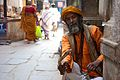 India DSC01252 (16102624803).jpg
