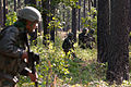 Indian Army soldiers with the 99th Mountain Brigade's 2nd Battalion, 5th Gurkha Rifles, move through the forests of western Fort Bragg during a training exercise with U.S. Army paratroopers.jpg