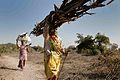 Indien (4046461221).jpg