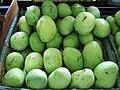 Indramayu mangoes Taman Wisata Mekarsari.JPG