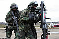 Internal Troops of the Ministry for Internal Affairs (Russia) (494-11).jpg