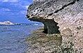 Intertidal notch (bioerosion notch) (northern end of North Point Peninsula, San Salvador Island, Bahamas) 1 (15814993988).jpg
