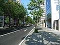ItsutsubashiDori2007-10.jpg