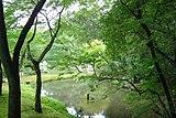 Gardens at the Kinkaku-ji