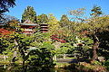 Japanese Tea Garden (San Francisco) - DSC00167.JPG