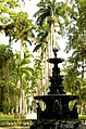 Jardim Botânico, Rio de Janeiro - State of Rio de Janeiro, Brazil - panoramio (6).jpg