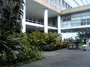 Jardim do prédio da Reitoria da UFRJ (1).jpg