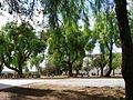 Jardim interno do Castelo de Montemor o Novo.jpg