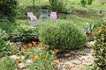 Jardin au printemps.jpg