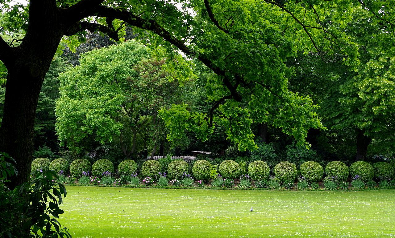 Grand Foyer Jardin Du Luxembourg : File jardin du luxembourg vue sur une pelouse et