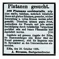 Köln 1885 Suchanzeige zur Straßenbepflanzung.jpg
