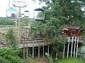 KCMO Zoo Nima 04.JPG
