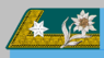 Kadett-Offiziersstellvertreter k.k. Gebirgstruppe 1907-08.png