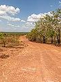 Kakadu National Park (AU), Marrakai Road -- 2019 -- 3766.jpg