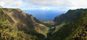 Leper War on Kauaʻi - Kalalau Valley viewed from the Nā Pali Kona Forest Reserve Pihea Trail.