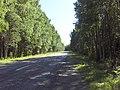 Kalnciema soseja - panoramio.jpg
