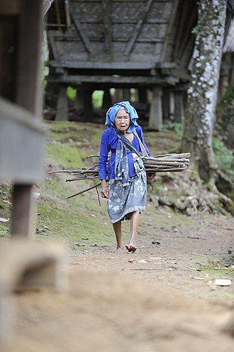 Baduy people - An old Kanekes lady carrying firewood.
