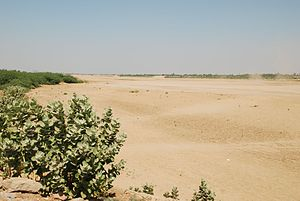 Mareb River - The dry river at Kassala