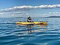 Kayaking in Port Phillip Bay, Victoria, Australia.jpg