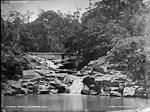 Kembla Creek, Illawarra (2376043167).jpg