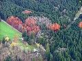 Kempter Wald - panoramio (1).jpg
