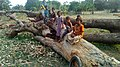 Kids and a fallen log.jpg