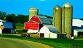 Killarney Koner Farm - panoramio.jpg