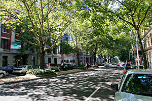 Hoddle Grid - Trees surrounded by buildings, King Street