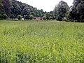Klärananlage von Grafenau - panoramio.jpg
