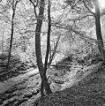 Kleine zwitserse brug - Bloemendaal - 20035934 - RCE.jpg