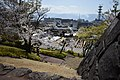 Kofu Castle 201904k.jpg