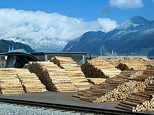 Renewable resource - Sawmill near Fügen, Zillertal, Austria
