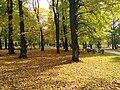 Kuldne sügis Kopli kalmistupargis.jpg