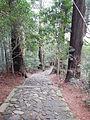 Kumano Kodo pilgrimage route Daimon-zaka World heritage 熊野古道 大門坂30.JPG