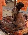 Kumbh Mela, India (32339646417).jpg