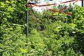 Löbau - Landesgartenschau 173 ies.jpg